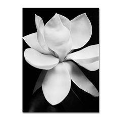 Michael de Guzman 'Magnolia' Art (14 x 19 Wrapped art)