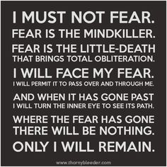 Fear Is The Mind Killer Quote Gallery why fear should have your ears not your balls and podcast Fear Is The Mind Killer Quote. Here is Fear Is The Mind Killer Quote Gallery for you. Fear Is The Mind Killer Quote i must not fear fear is the mind k. Dune Quotes, Fear Quotes, Quotes To Live By, Courage Quotes, Truth Quotes, Work Quotes, Strong Quotes, Daily Quotes, Quotes Quotes