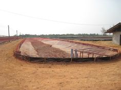 One of our customer give us his picture of our net , amazing to protect your vegetable or fruit#www.okorder.com