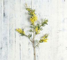 Faux Acacia Branch - Yellow #potterybarn