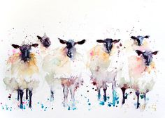 Contemporary LIMITED edition print of my original watercolour  SHEEP  Printed using epson Chroma K3 pigments on archival 315 gsm paper.