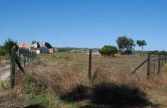 Terreno c/ 1.286 m2 e casa antiga  Serra do Bouro  Caldas da Rainha