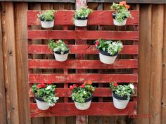 Do this for the blank brick wall near the spa. Maybe use glass mason jars instead of pots so that I can put plant clippings in them until they root, then pot them. Would get rid of that old pallet in the shed