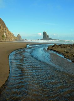 Anawhata Beach near Auckland, New Zealand (by Ariel Ophelia). - Its a beautiful world