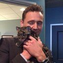 Tom Hiddleston plays with a baby leopard. Tom Hiddleston Loki, Tom Hiddleston Imagines, Thomas William Hiddleston, Tom Hiddleston Gentleman, Marvel Actors, Marvel Avengers, Valo Ville, Loki Aesthetic, Toms