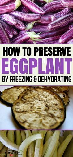 Food Preservation: Do you have a bumper crop of eggplant in the garden? Learn how to preserve eggplant by freezing and dehydrating to enjoy it all year long! Canning Eggplant, Preserving Eggplant, Freezing Eggplant, Preserving Food, How To Freeze Eggplant, How To Store Eggplant, Canning Recipes, Raw Food Recipes, Soup Recipes