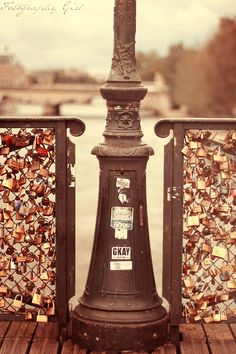 Padlocks at Pont des Arts with the love of my life. Love Locks Paris, Oh The Places You'll Go, Places To Visit, Africa Day, South Africa, Different Types Of Fences, Love Lock Bridge, Europe, Editing Pictures
