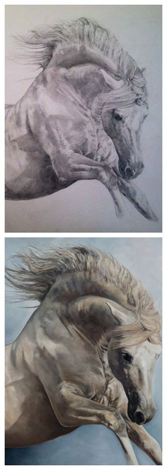 PRE Stallion 'Ponent Rising' Equine Art by Tony O'Connor whitetreestudio.ie