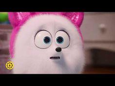 A kis kedvencek titkos élete 2 - Gigi előzetes - YouTube Lorax, Secret Life Of Pets, Icecream, Youtube, Fictional Characters, Ice Cream, Fantasy Characters, Youtubers, Youtube Movies