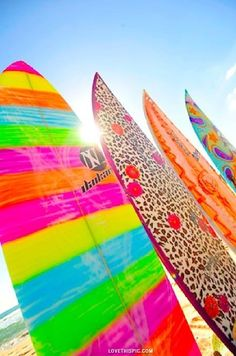 Bright Surf Boards summer colorful beach ocean waves surfer surf surf boards