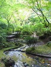 The Natural Garden at the Portland Japanese Garden.