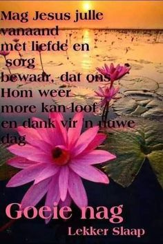 Good Night Messages, Good Night Quotes, Morning Greetings Quotes, Morning Quotes, Good Night Blessings, Goeie Nag, Afrikaans Quotes, 1st Grade Worksheets, Sleep Tight