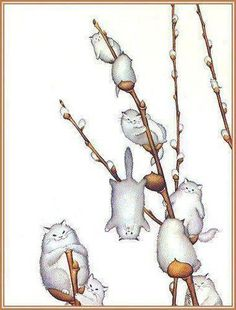 Willowy Kitties, by morreth on LJ cute whimsical illustration of willow catkins made of cats I Love Cats, Crazy Cats, Cute Cats, Funny Kittens, Adorable Kittens, Animals Watercolor, Illustration Art, Illustrations, Cat Drawing