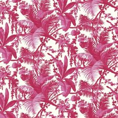 Ferns Print Cotton Poplin Dress Fabric CC-FER-Pink-M