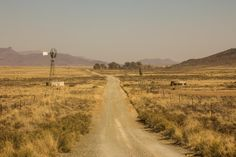 12 Reasons to Holiday in the Karoo - Karoo Space Windmill, South Africa, Watercolor Paintings, Westerns, Country Roads, Night, Holiday, Nature, Outdoor
