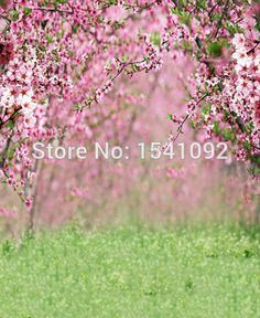 FREE Shipping TODAY photography background for photo studio 100X125cm newborn…