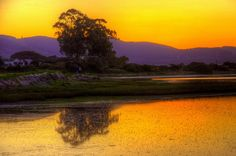Sunset on the Knysna Estuary, Leisure Isle, Knysna, South Africa World Pictures, Pictures Images, Beauty Planet, Knysna, Nature View, Beautiful Places In The World, Beautiful Gardens, Sunsets, South Africa
