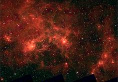The Dragonfish Nebula