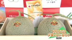 This weekend, a set of two Yubari melons fetched a record-breaking 3.2 million yen ($29,000) at auction in Hokkaido, Japan.