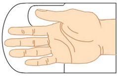 Выкройка варежек из меха