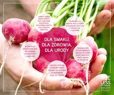 Świeże warzywa to bardzo ważny składnik zdrowej kuchni. Należy do nich rzodkiewka – wspomaga nasz układ odpornościowy, zapobiega dolegliwościom ze strony układu pokarmowego, a także dzięki zawartości siarki, upiększa nasze włosy. Nie zapomnijmy dodać jej do letnich sałatek!  #ageless #wieczniemlodzi #wiecznamlodosc #warzywa #rzodkiewka #witaminy www.ageless.pl