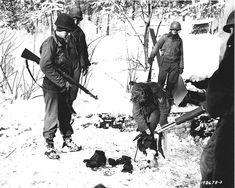 German Soldiers, Soldiers Wear, Captured U.S. uniforms