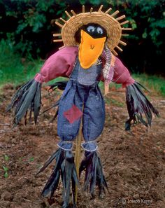 Scarecrow...teehehe