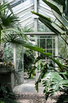 Lost in Plantation, botanical garden, Belgrade, Serbia, Belgrade travel tips, Botanical garden Belgrade