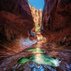 Zion National Park. Matt Anderson, Your Take