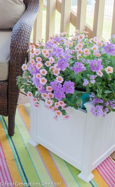 How to Decorate with Container Plants via @4gens1roof