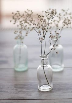 Wedding Ideas: babies-breath-simple-centerpieces This with like test tubes or beakers? Deco Floral, Arte Floral, Glass Bottles, Glass Vase, Small Bottles, Mini Bottles, Perfume Bottles, Vase Transparent, Coastal Wedding Inspiration