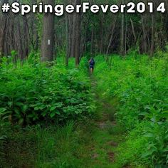 #SpringerFever2014 #AppalachianTrail #Trail #AT #BackpackingAT #Backpacking #Hiking #Hike #Latergram