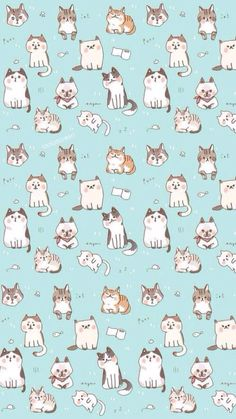 Iphone wallpapers cats