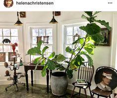 Helenas Catskils househ