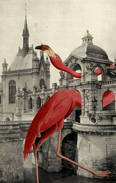 Julia Lillard Art                                                                                                                                                     More