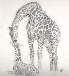Giraffe sketch by Killslay-steelclaw on DeviantArt