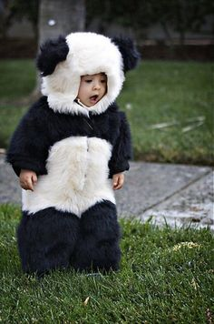 This panda costume is amazing. My kids will deffinatly be dressed up as pandas! So Cute Baby, Baby Love, Cute Kids, Cute Babies, Baby Kids, Baby Baby, Funny Kids, Niedlicher Panda, Cute Panda