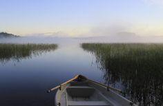 Mindfulness -Harjoitukset | Suomen Mielenterveysseura