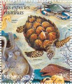 Postal Stamp XXIII