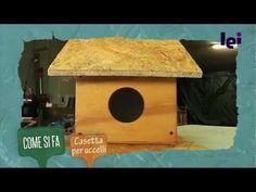 Come costruire una casetta per gli uccelli in legno: fai da te - Giardinieri in affitto
