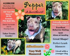 I'M OUTTA THERE💗💗 - PEPPER ON DEATH ROW 09/03/16