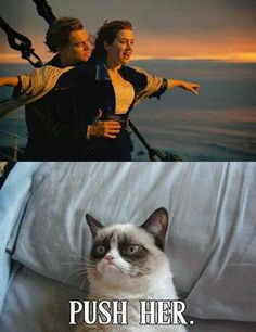 Grumpy Cat on current romance trends. All I have to say is that the older I get the more I can relate to Grumpy Cat. LOL Haha! ~Me  #grumpycat   #romance   #LOL