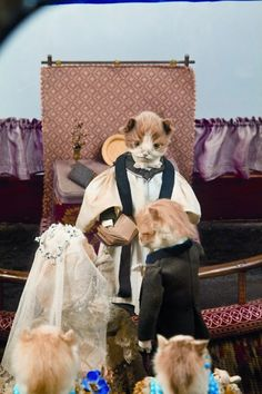 walter potter taxidermy - Google Search