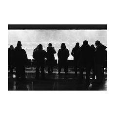 Las tardes del Metropolitano (V) #atleti #atleticodemadrid #wandametropolitano #estadiometropolitano #madrid #spain #blancoynegro #blackandwhite #stadium #architecturephotography #igersmadrid #vscogram #vscoedit #iphone6 #corajeycorazon #sombras #shadowhunters #atletivalencia