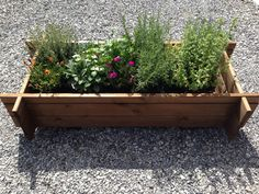 jardinière, herbes aromatiques , potager , douglas , bois extérieur, pot de fleurs