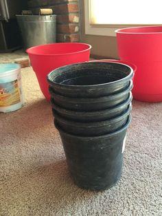 DIY jardinagem suculenta plantador de camadas como, recipiente jardinagem, artesanato, jardinagem, como a, suculentas, plantadores descartáveis