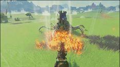The Legend of Zelda: Breath of the WIld Combat - NeoGAF
