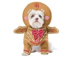 funny dog xmas outfits - Google Search Pet Halloween Costumes, Pet Costumes, Christmas Costumes, Costumes 2015, Funny Halloween, Adult Costumes, Christmas Animals, Christmas Dog, Christmas Gingerbread