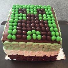 Minecraft Cake Ice Cream Cake Mint Chocolate Chip  DIY Minecraft http://evenabratcanmakeit.wordpress.com/my-cakes-and-cupcakes