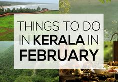 Things to do in Kerala in February #keralatourism